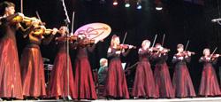 Коллектив скрипачей